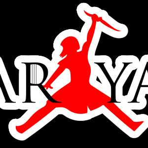 ARYA Stark Jordan Logo Sticker